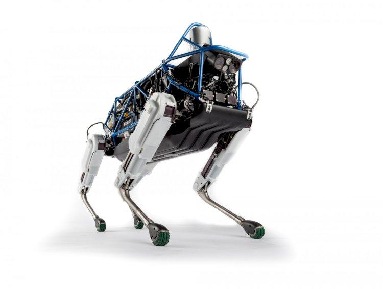Boston Dynamics'den HANDLE SPOT MİNİ ve atası SPOT